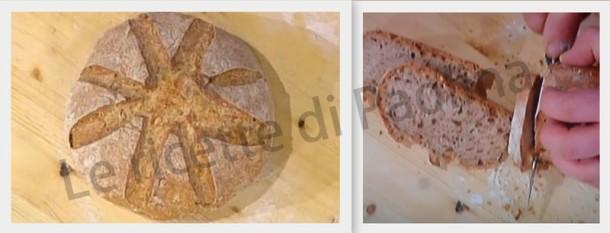 Pane di girasole di Gabriele Bonci Le ricette di Paolina